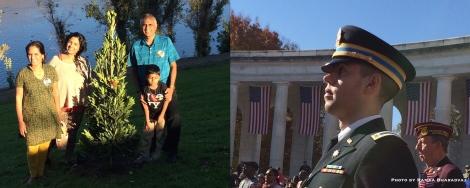 Poignant - Tree for Sumi & Salute to Veterans
